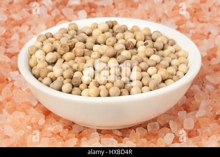 White peppercorns on a bed of Himalayan salt, giving you a contrast of the pink salt and white pepper corns. - Stock Photo
