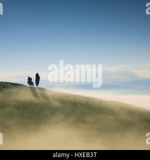 Tuscany, two lonely trees and fog in backlight. Volterra, Italy, Europe. - Stock Photo
