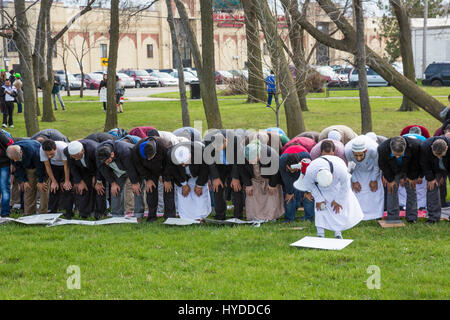 dearborn muslim single men Muslim takeover of dearborn, michigan large numbers of muslim students have a separate the faith of islam has ceased to be a great power among men.