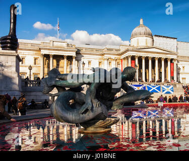 London, UK, 11th November, 2016. Red poppies and wreaths float in fountains at Trafalgar square in front of National - Stockfoto