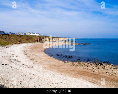 Beach at Seaham Co. Durham England with bright white pebbles of Magnesian Limestone the underlying geology - Stock Photo