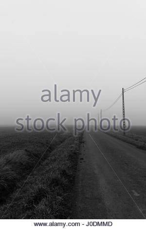 Abandoned road with overhead power lines in Belgian countryside - Stock Photo