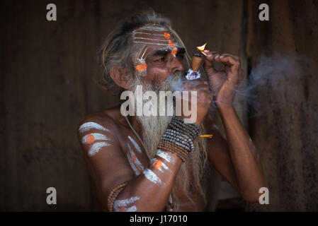 Portrait of sadhu baba (holy man) with yellow face ...