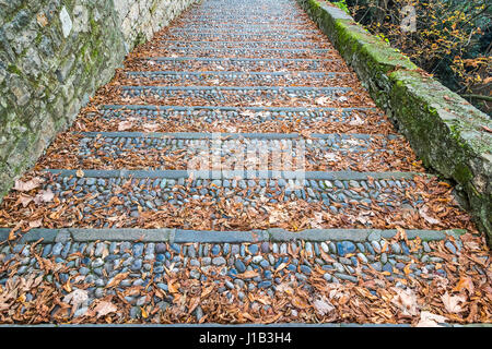 Vintage paved stone steps covered with brown dry fallen leaves - Stock Photo