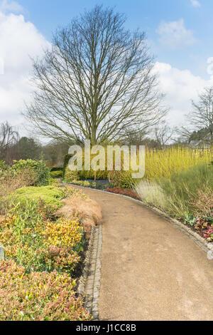 Spring at Harlow Carr Garden - Stock Photo
