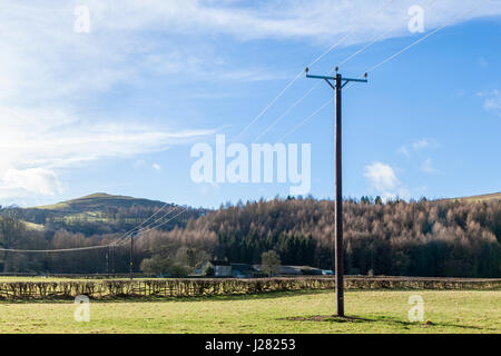 Electricity supply in the countryside. Power lines running across farmland, Offerton, Derbyshire, England, UK - Stock Photo