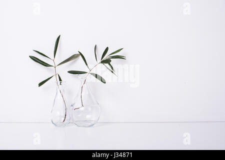 Two olive branches in glass bottles on table near the wall, white background with copy space - Stock Photo