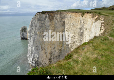 The Pinnacles, a series of chalk sea stacks off the Dorset coast at Studland - Stock Photo