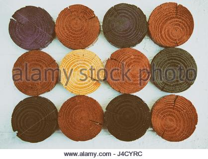 Painted wood discs on white background - Stock Photo