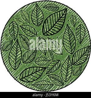 leaves nature draw - Stock Photo