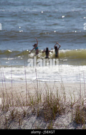 Three blurry young women playing in breaking ocean waves on a sunny day in the background and a sand dune with spikey - Stock Photo