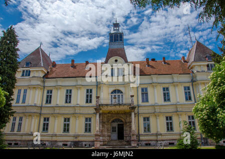 Saray in Resen - Dragi Tozija Home of Culture - Stock Photo