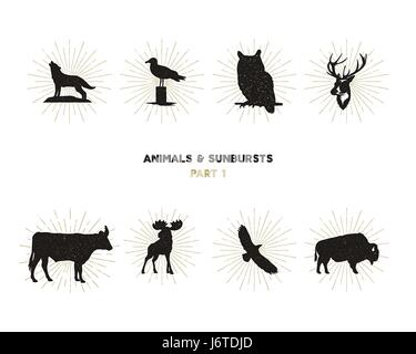 Set of wild animal figures and shapes with sunbursts isolated on white background. Black silhouettes wolf, deer, - Stock Photo