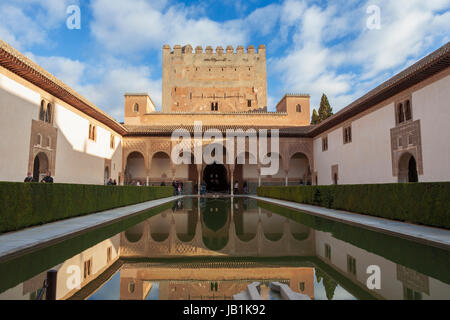 Court of the Myrtles and Comares Tower, The Alhambra, Granada, Region Stock P...