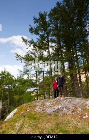 A man and woman standing on Signal Rock, An Torr, Glencoe, Scotland, UK - Stock Photo
