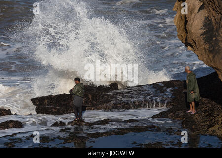 A man waits for a gap between the large Altantic waves breaking on the shoreline to gather shellfish - Stock Photo