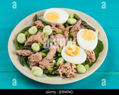 Tuna Fish Salad with Broad Beans Boiled Eggs and Asparagus Against a Blue Background - Stock Photo