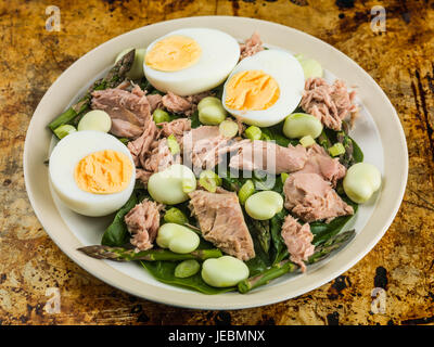 Tuna Fish Salad with Broad Beans Boiled Eggs and Asparagus Sitting on an Oven Tray - Stock Photo