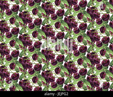 Seamless pattern Watercolor cherry illustration - Stock Photo