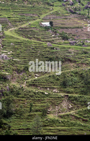 The zig-zag paths and terraces on the hillside going through the rice plantations in the Kathmandu Valley Shivapuri - Stock Photo