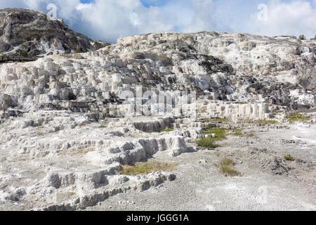 Mammoth hot springs minerva terrace yellowstone national for Minerva terrace yellowstone