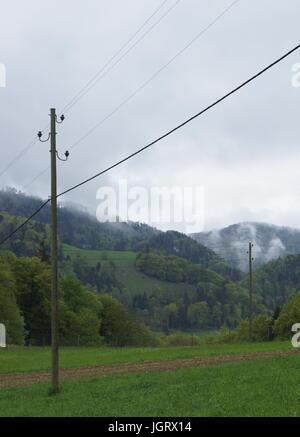 Power lines in the rainy, lush green countryside - Stock Photo