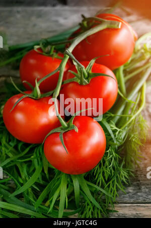 Ripe red tomatoes on a branch lying on the wooden background with the greenery of tarragon, fennel and lettuce in - Stock Photo