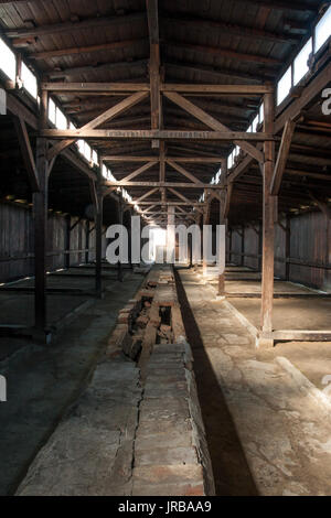 Inside The Barracks At Auschwitz Stock Photo Royalty Free