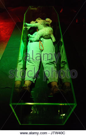 August 10, 2017 - London, London, UK - A visitor an her dog lie in a lit neon green coffin and takes a selfie photo - Stock Photo
