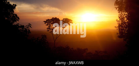 A lonely tree on a background of a beautiful sunset in Kaw mountains, French Guiana - Stock Photo