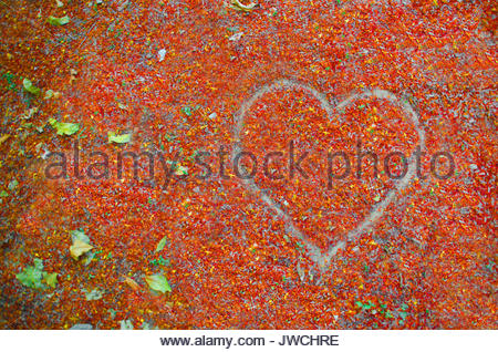 Heart shape over a space of leaves - Stock Photo