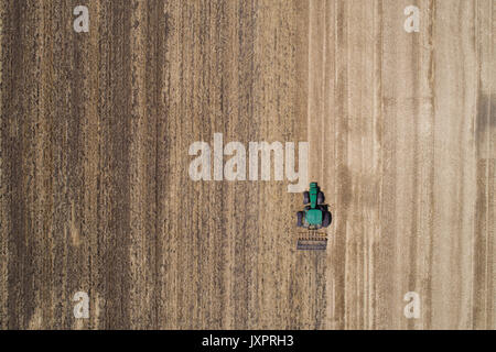 Tractor working in golden wheat field after harvest. Aerial image of agricultural seasonal works - Stock Photo
