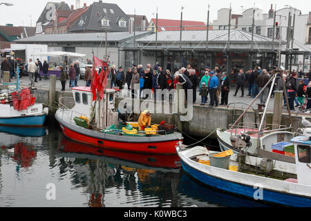Tourists watching a fisherman at work in Eckernförde old harbour, on the Baltic, in northern Germany, near the Danish - Stock Photo
