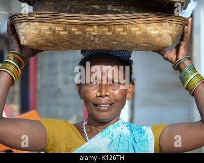 Elderly Indian Adivasi woman (tribal woman) with two distinctive golden nose studs, carrying on her head a set of - Stock Photo