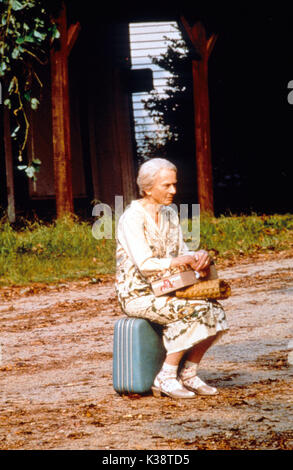 FRIED GREEN TOMATOES aka FRIED GREEN TOMATOES AT THE WHISTLE STOP CAFE JESSICA TANDY     Date: 1991 - Stock Photo