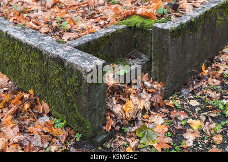 Empty stone stairs covered with red fallen leaves in autumnal park - Stock Photo