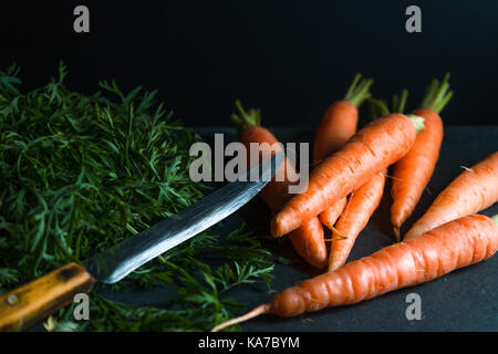 Orange carrots, leaves and a knife on a dark blue background horizontal - Stock Photo