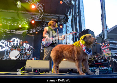 Las Vegas , Nevada - September 23, 2017 – The band Stick Figure with their dog Cocoa performing on stage at the - Stock Photo