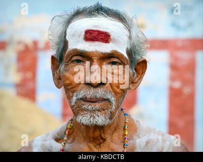 Old Shaivite Brahmin with white vibhuti and an almost rectangular, red tilaka mark (symbolic third eye) on his forehead - Stock Photo