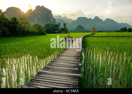 Sunset over green rice fields and mountains in Vang Vieng, Laos - Stock Photo
