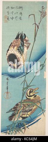 歌川広重画 雪中芦に鴨, Mallard Ducks and Snow-covered Reeds, Utagawa Hiroshige, ca. 1843 - Stock Photo