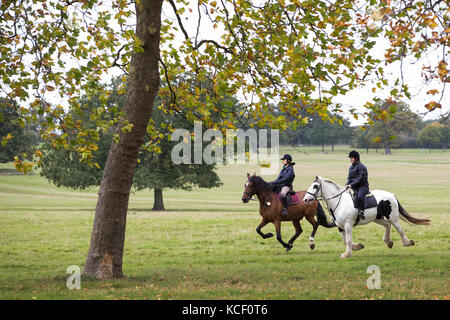 Windsor, UK. 4th October , 2017. Riders on horseback in Windsor Great Park during autumn. Credit: Mark Kerrison/Alamy - Stock Photo