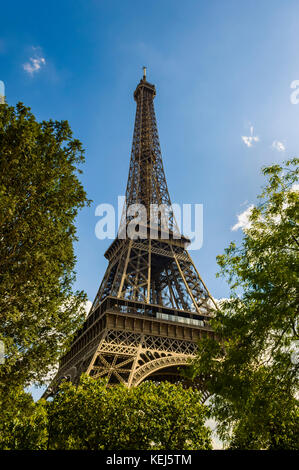 Abstract image of the Eiffel Tower in Paris, against a blue sky, framed by trees and angled up from below. - Stock Photo