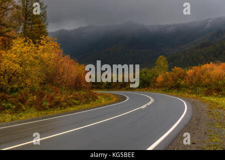 A picturesque autumn view of a steep turn of a wet asphalt road, mountains, golden trees and a dark stormy sky in - Stock Photo