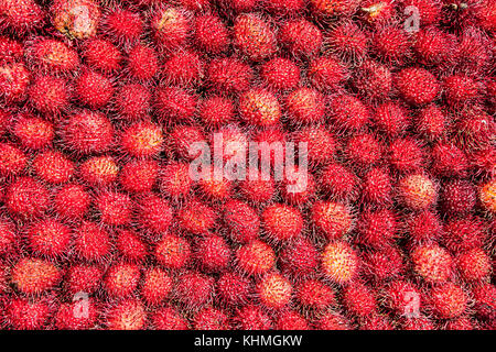 Closeup of freshly produced bunch of ripe and delicious Lychee fruits, Mexico. - Stock Photo