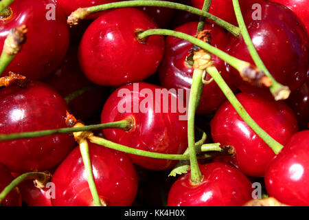 Cherry sweet red fresh fruit texture as background. - Stock Photo