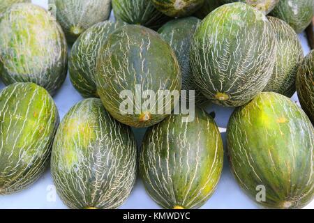 Piel de Sapo Santa Claus melon stacked rows in fruit market - Stock Photo
