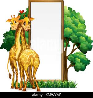 Two giraffes and blank whiteboard illustration - Stock Photo