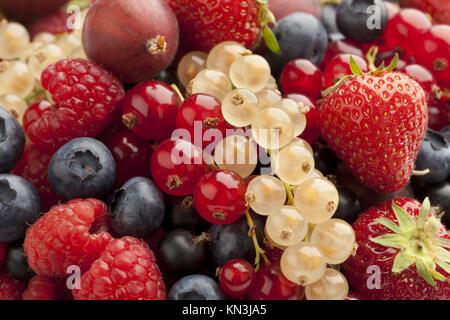 Composition of summer berries full frame. - Stock Photo