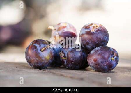 Natural organic blue plums on wooden table. Farmers fruits still life photography, selective focus beautiful bokeh - Stock Photo